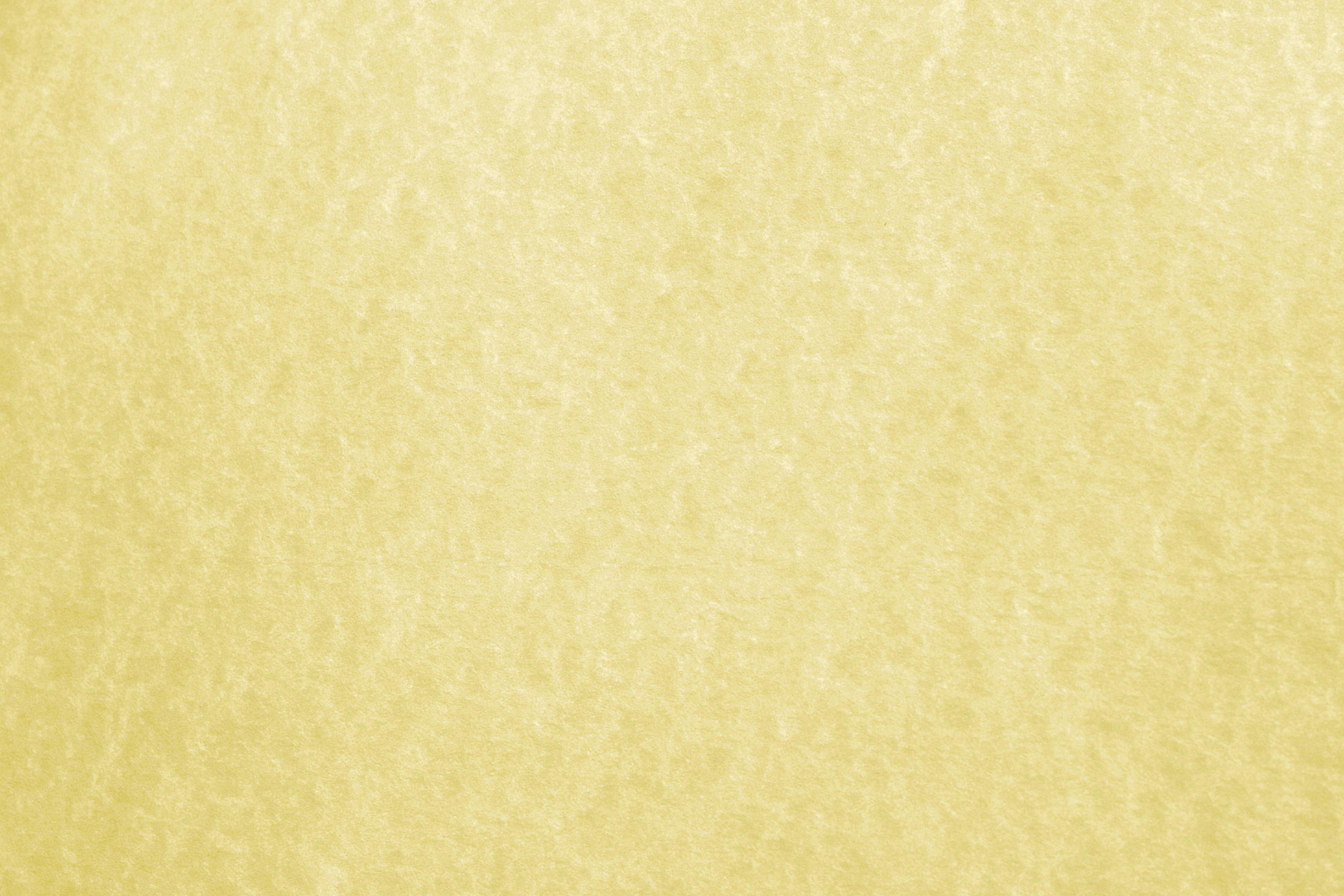 parchment-background-19